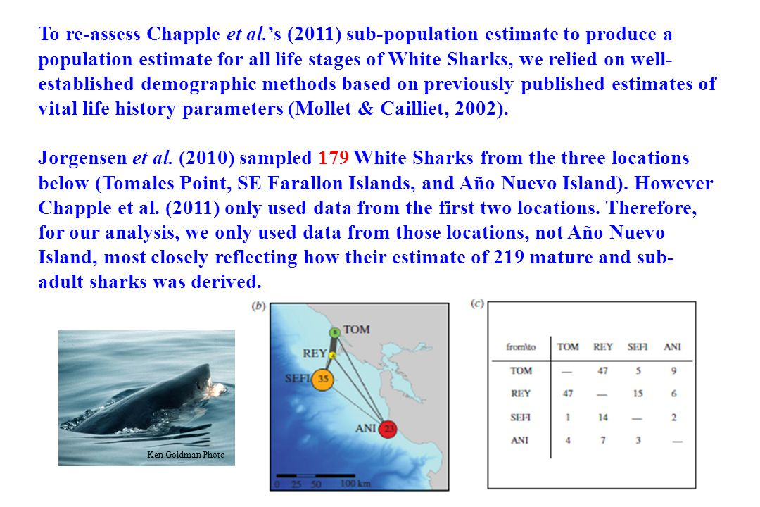 AGE- & SIZE-BASED FREQUENCIES The size-frequency and sex of the sharks sampled by Chapple et al.