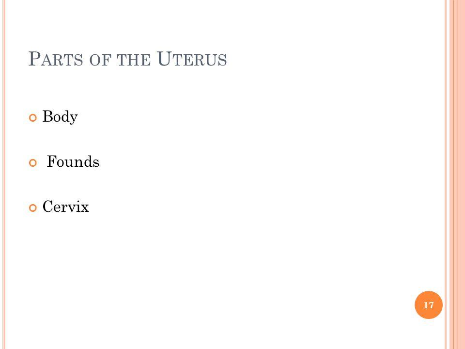 P ARTS OF THE U TERUS Body Founds Cervix 17