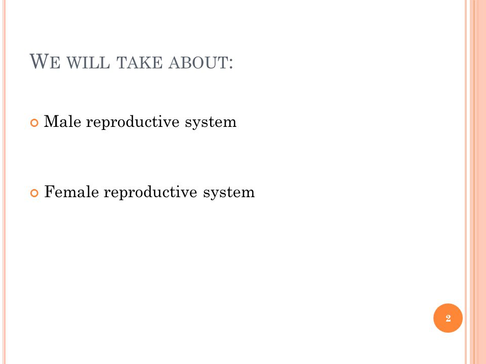 W E WILL TAKE ABOUT : Male reproductive system Female reproductive system 2