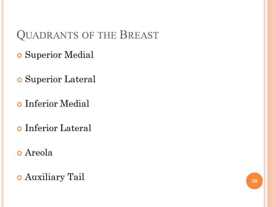 Q UADRANTS OF THE B REAST Superior Medial Superior Lateral Inferior Medial Inferior Lateral Areola Auxiliary Tail 30