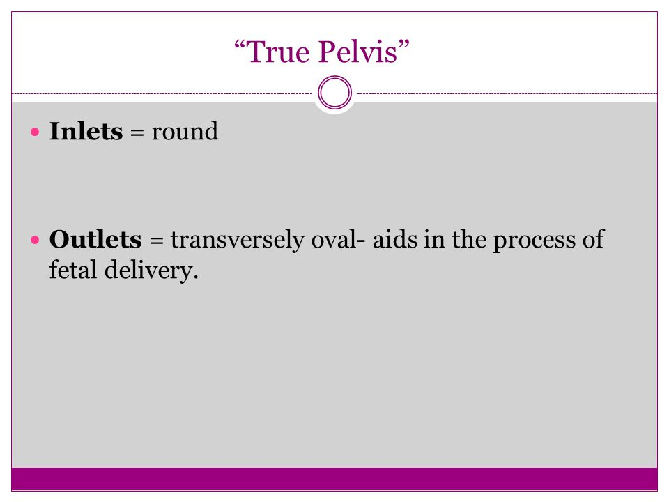 """True Pelvis"" Inlets = round Outlets = transversely oval- aids in the process of fetal delivery."