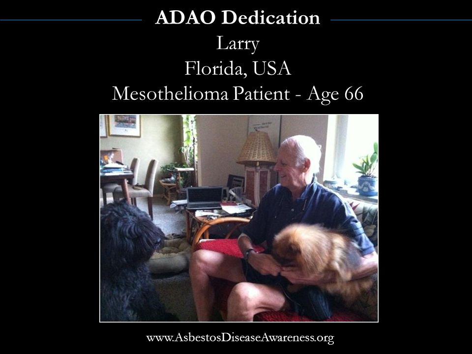 ALAN REINSTEIN former ADAO President Mesothelioma Victim May 2006May 2005 Linda@adao.us