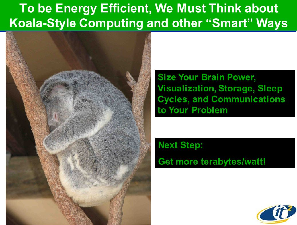 To be Energy Efficient, We Must Think about Koala-Style Computing and other Smart Ways Size Your Brain Power, Visualization, Storage, Sleep Cycles, and Communications to Your Problem Next Step: Get more terabytes/watt!