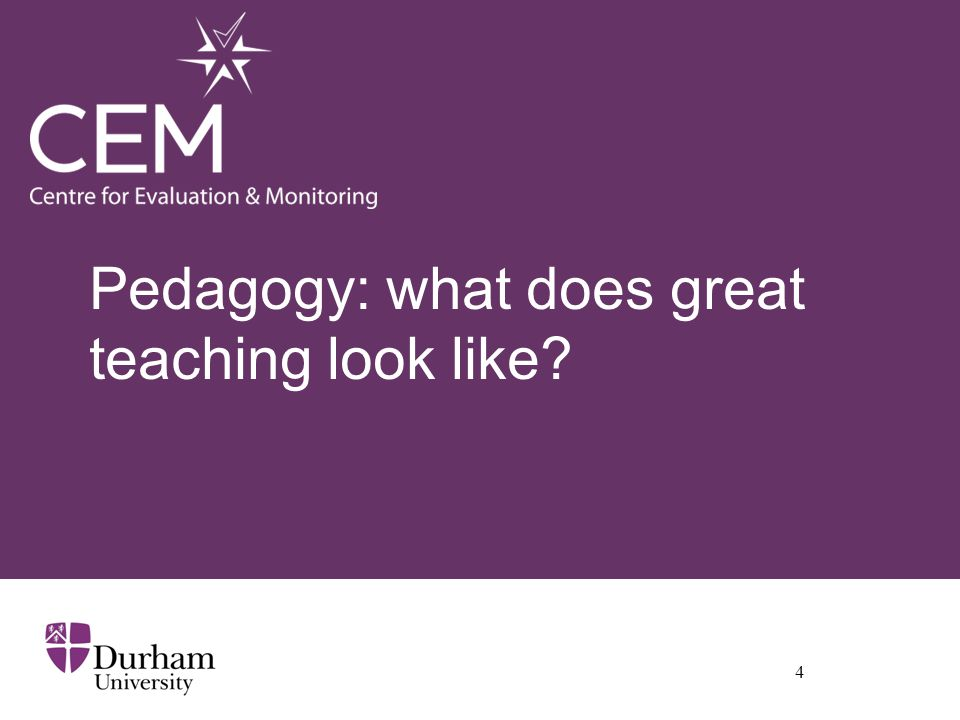 Pedagogy: what does great teaching look like 4