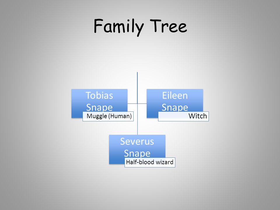 Family Tree Severus Snape Half-blood wizard Tobias Snape Muggle (Human) Eileen Snape Witch