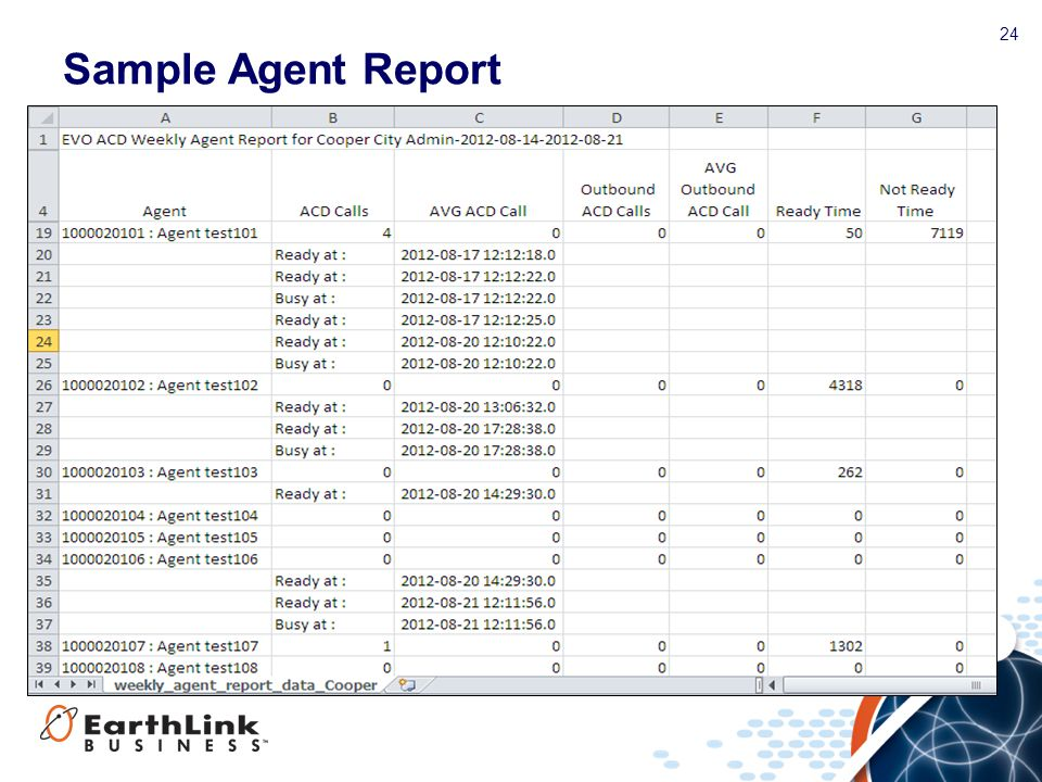 24 Sample Agent Report