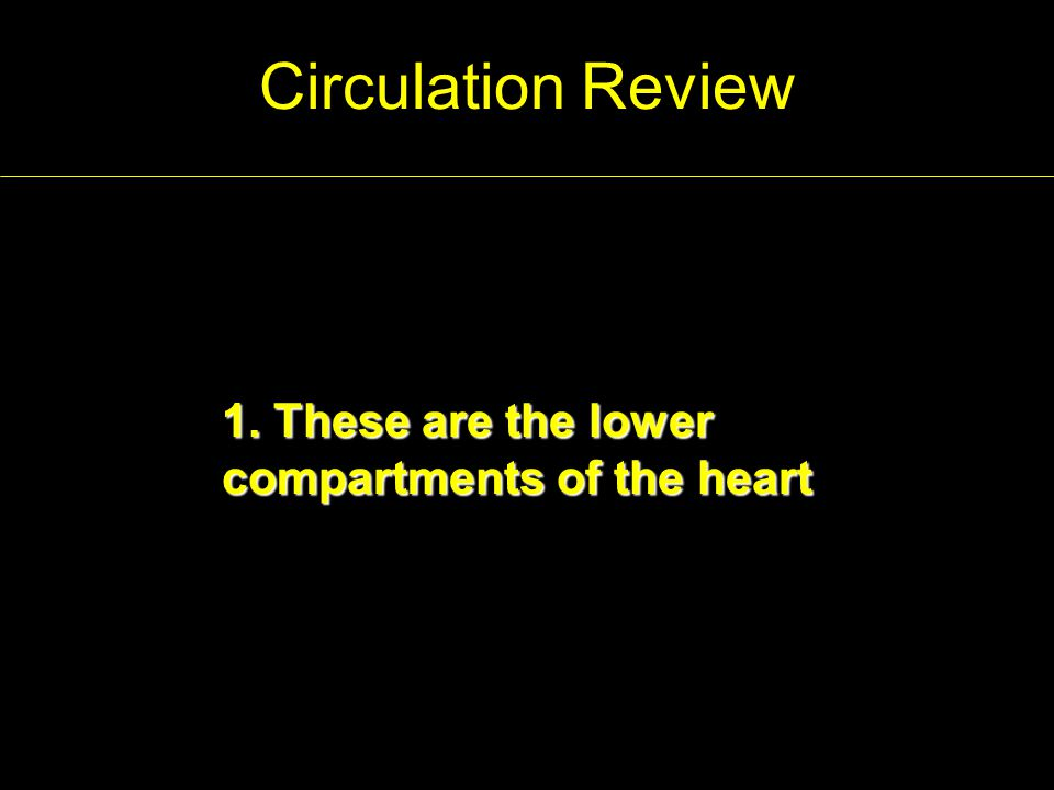 Circulation Review 2.This vein feeds the right atrium.