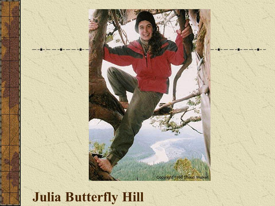 Julia Butterfly Hill