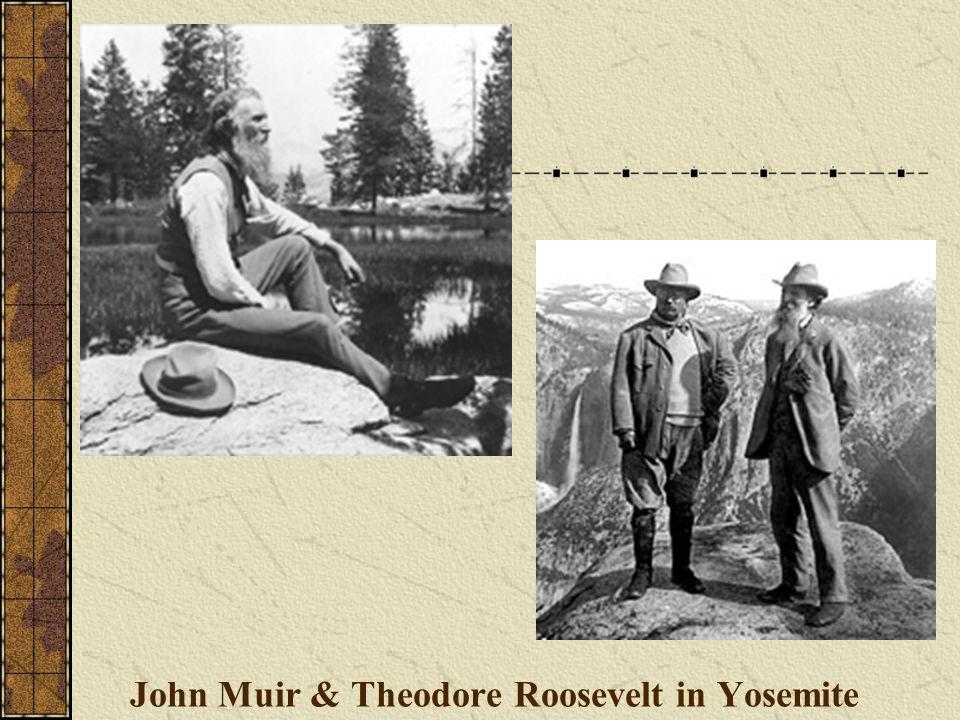 John Muir & Theodore Roosevelt in Yosemite