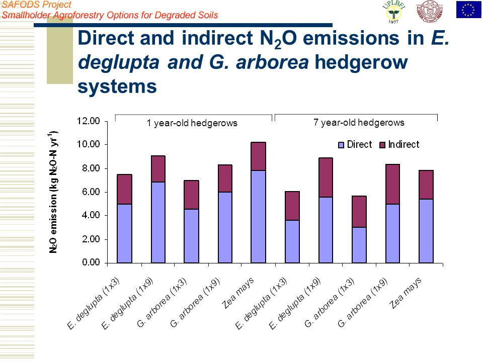 1 year-old hedgerows 7 year-old hedgerows Direct and indirect N 2 O emissions in E. deglupta and G. arborea hedgerow systems