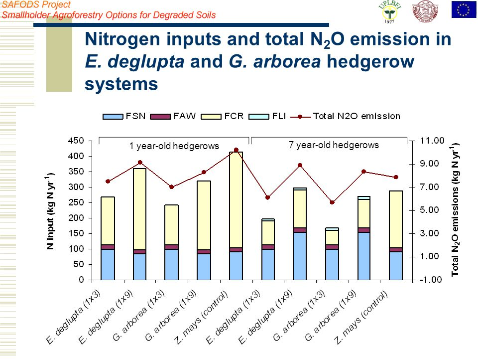 Nitrogen inputs and total N 2 O emission in E. deglupta and G. arborea hedgerow systems 1 year-old hedgerows 7 year-old hedgerows