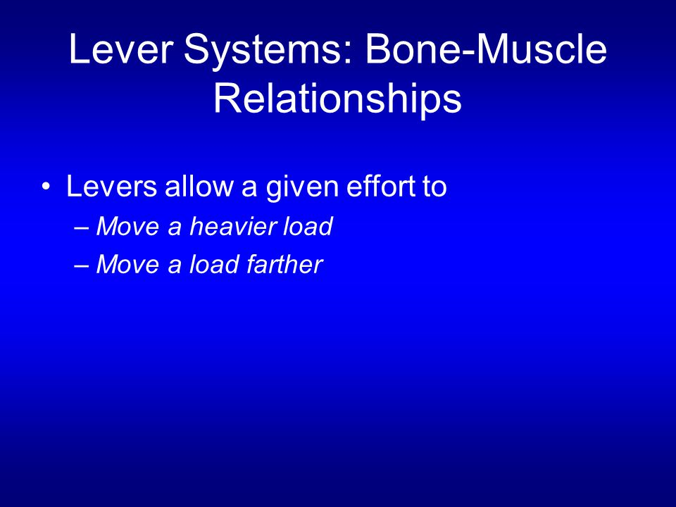 Lever Systems: Bone-Muscle Relationships Levers allow a given effort to –Move a heavier load –Move a load farther