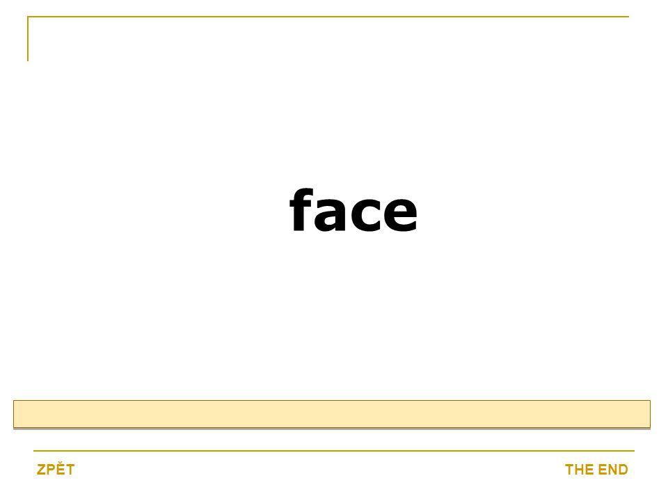 face THE ENDZPĚT