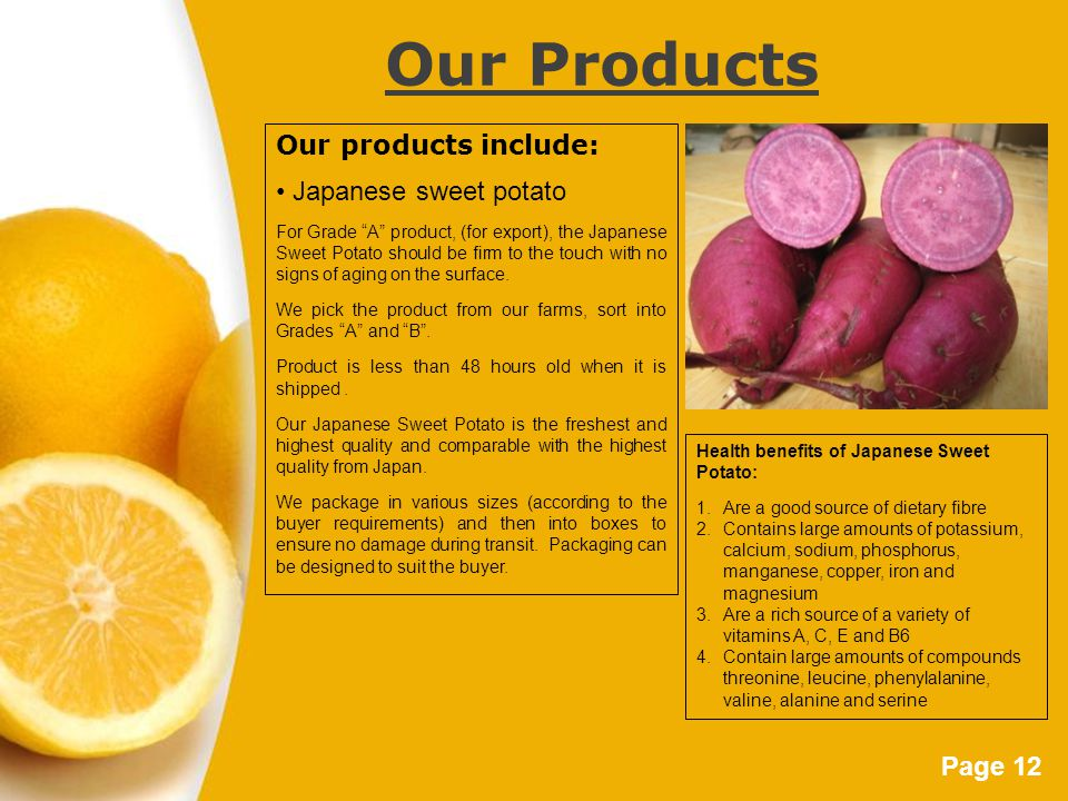 Page 12 Our Products Our products include: Japanese sweet potato For Grade A product, (for export), the Japanese Sweet Potato should be firm to the touch with no signs of aging on the surface.
