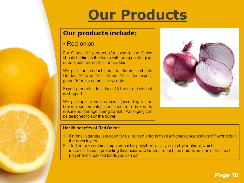 Page 18 Our Products Our products include: Red onion For Grade A product, (for export), the Onion should be firm to the touch with no signs of aging.