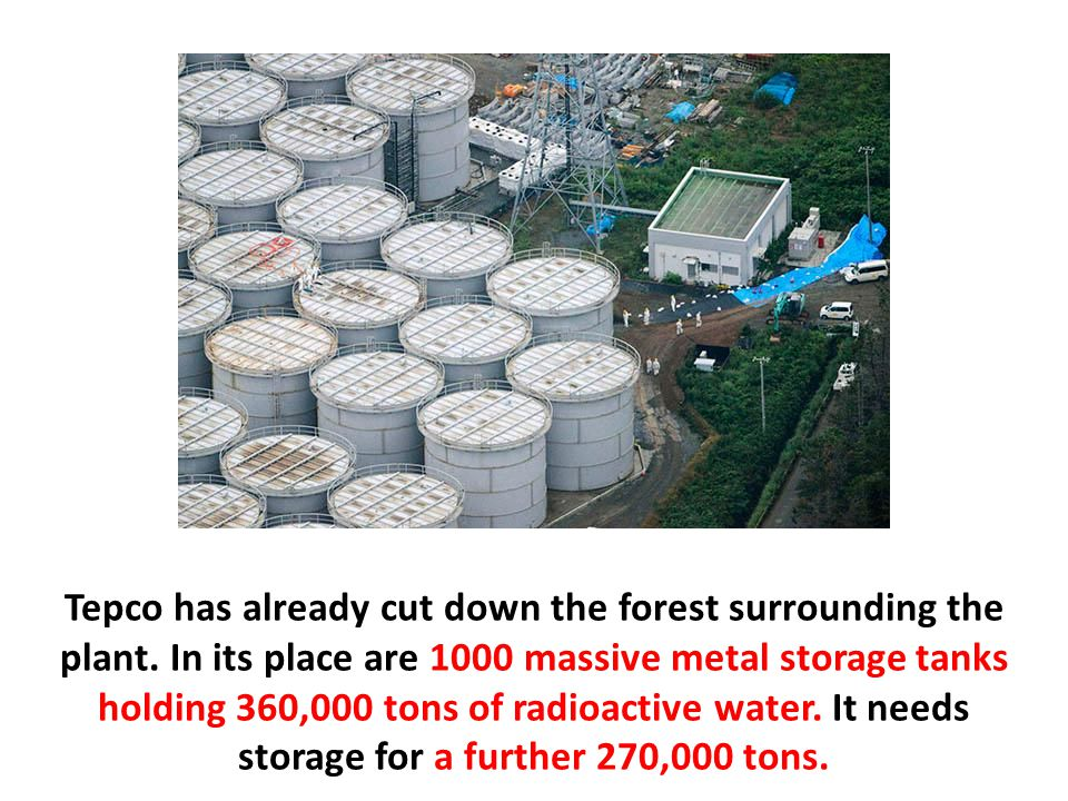 Tepco has already cut down the forest surrounding the plant.