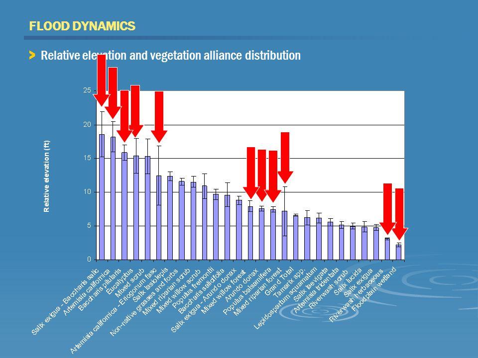 FLOOD DYNAMICS > Relative elevation and vegetation alliance distribution