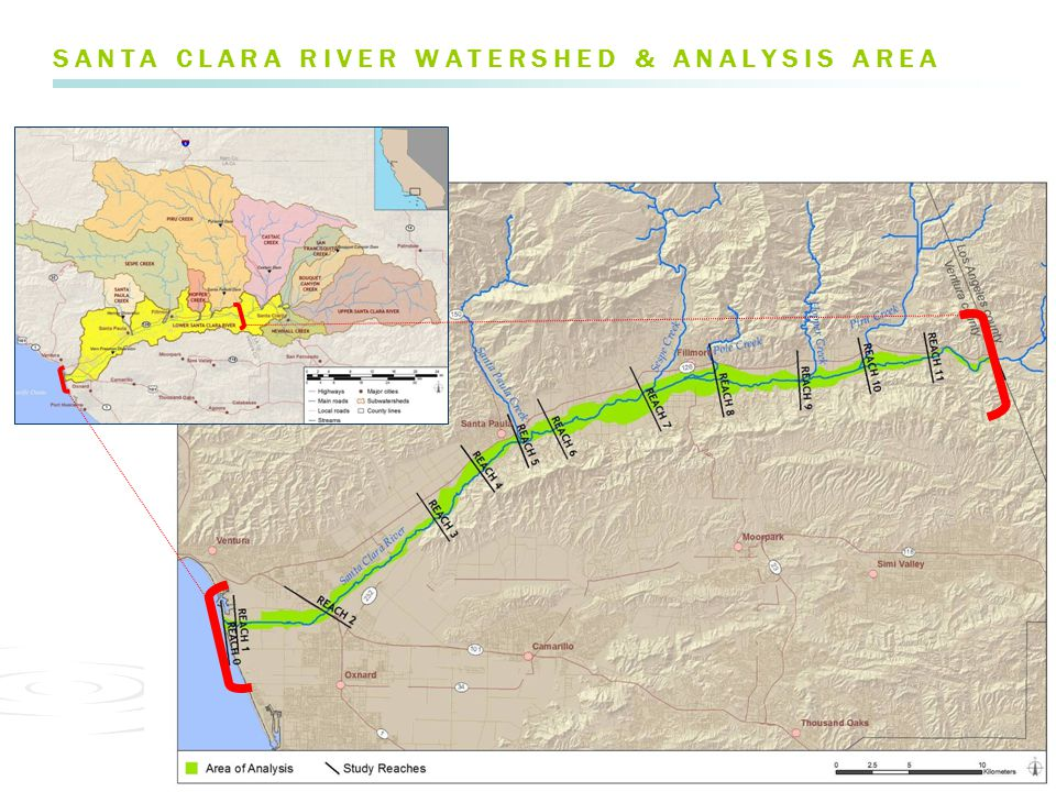 FLOOD DYNAMICS FLOW JUNE 2002 pre-high flow > Vegetation reset after large floods, particularly in El Niño years