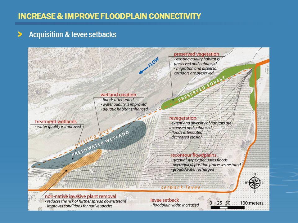 INCREASE & IMPROVE FLOODPLAIN CONNECTIVITY > Acquisition & levee setbacks