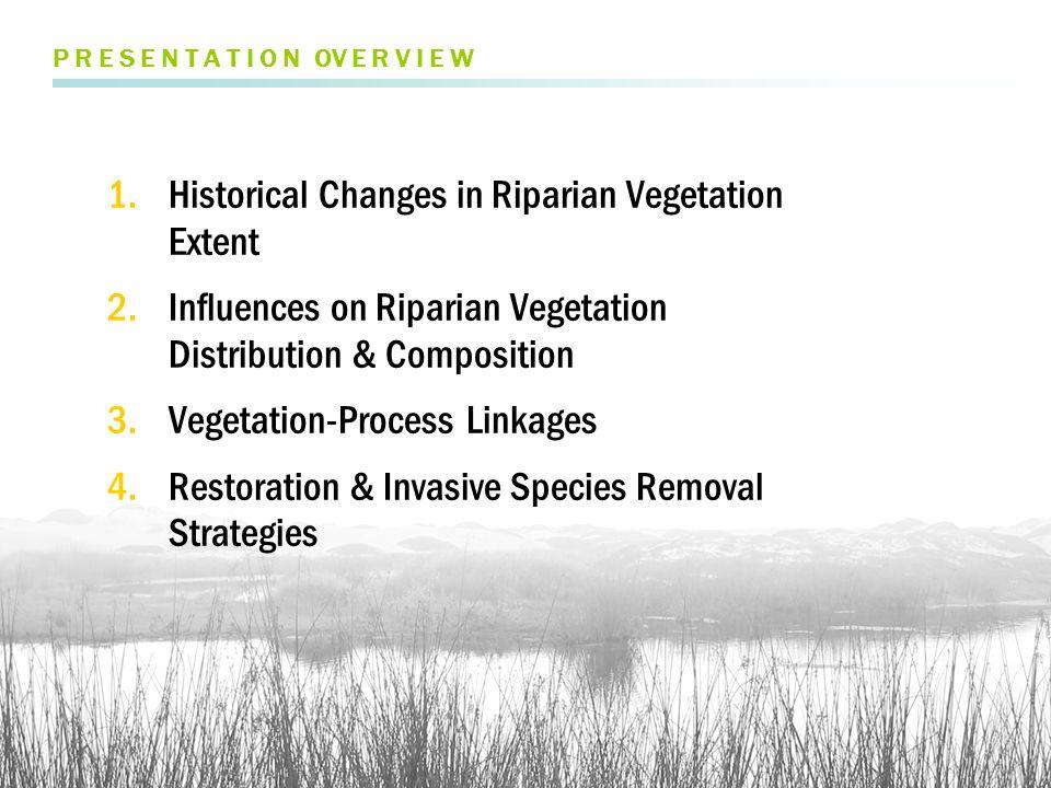 FEB 2005 high flow FLOOD DYNAMICS FLOW > Vegetation reset after large floods, particularly in El Niño years