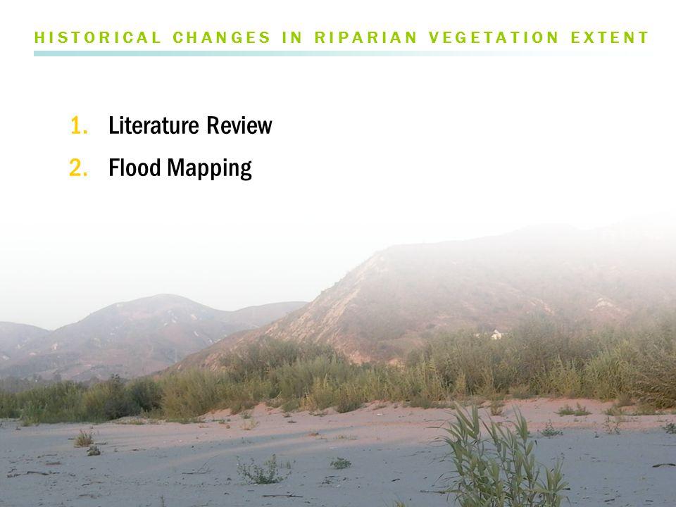 SEPT 2005 post-high flow FLOOD DYNAMICS FLOW > Vegetation reset after large floods, particularly in El Niño years