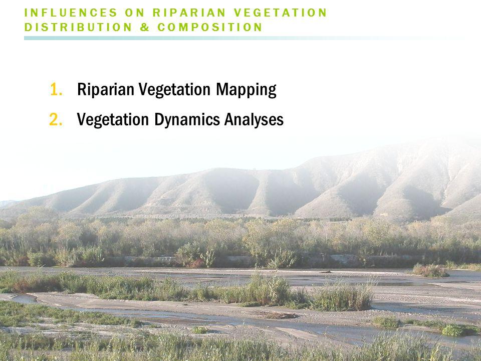 I N F L U E N C E S O N R I P A R I A N V E G E T A T I O N D I S T R I B U T I O N & C O M P O S I T I O N 1.Riparian Vegetation Mapping 2.Vegetation Dynamics Analyses