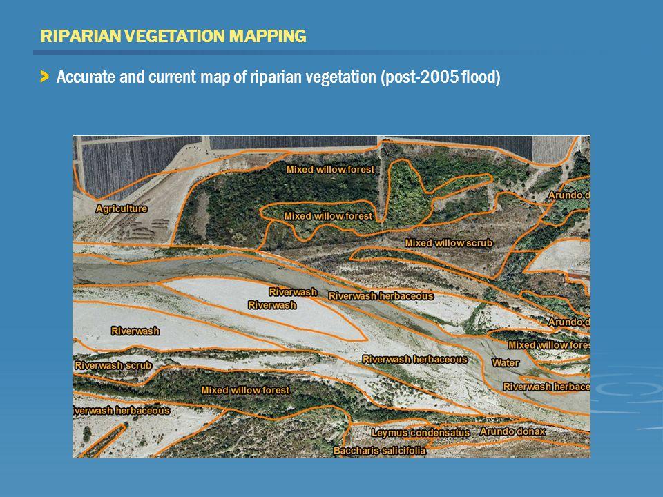 FLOODPLAIN DEVELOPMENT > Agriculture > Levees and urban development