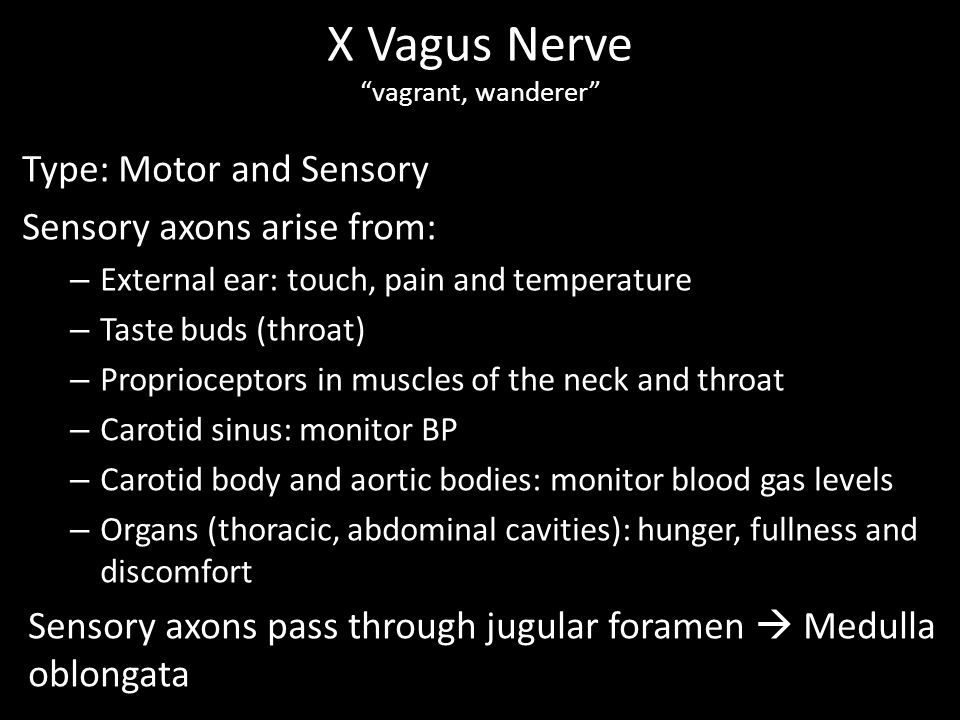 Type: Motor and Sensory Sensory axons arise from: – External ear: touch, pain and temperature – Taste buds (throat) – Proprioceptors in muscles of the