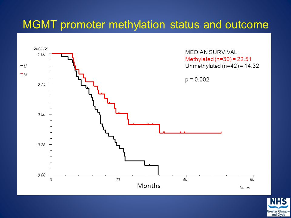 MGMT promoter methylation status and outcome MEDIAN SURVIVAL: Methylated (n=30) = 22.51 Unmethylated (n=42) = 14.32 p = 0.002 Months