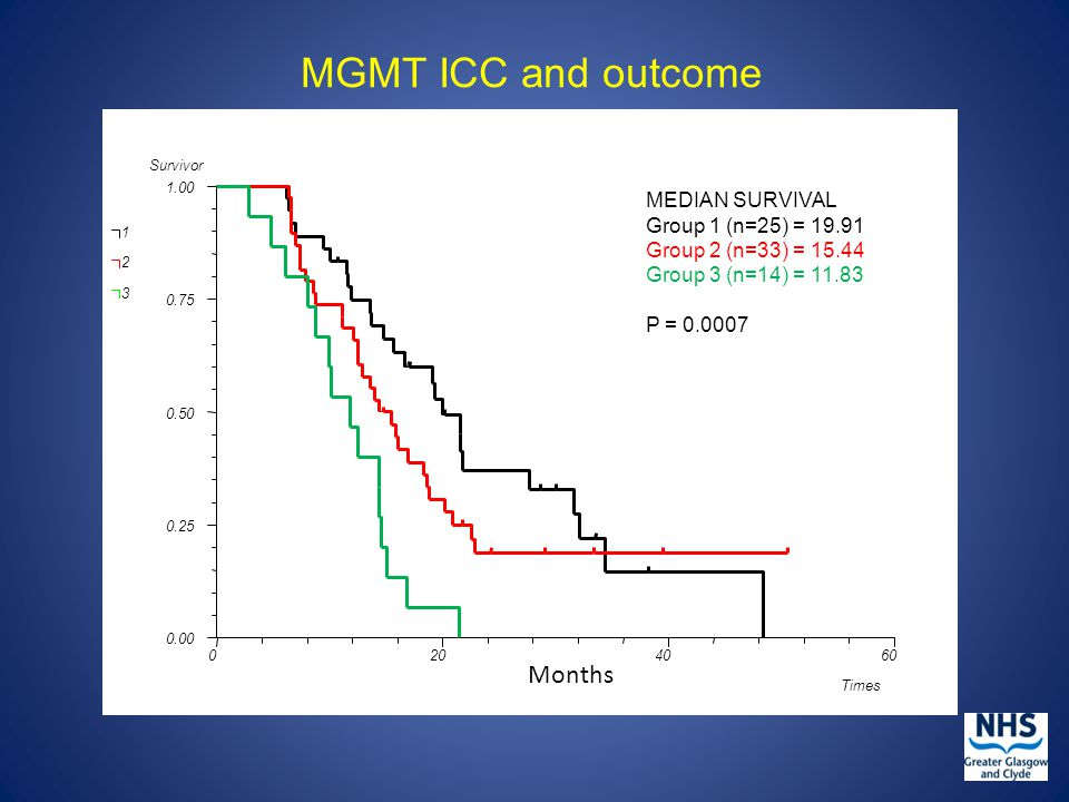 MGMT ICC and outcome MEDIAN SURVIVAL Group 1 (n=25) = 19.91 Group 2 (n=33) = 15.44 Group 3 (n=14) = 11.83 P = 0.0007 Months