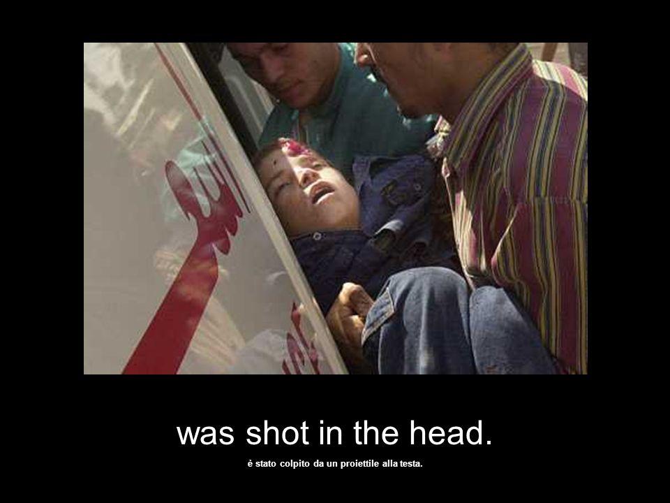 A Palestinian boy.… Un bambino palestinese ….