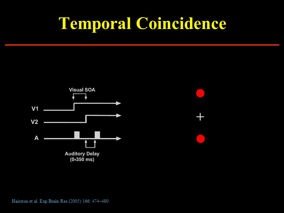 Temporal Coincidence Hairston et al. Exp Brain Res (2005) 166: 474–480 +