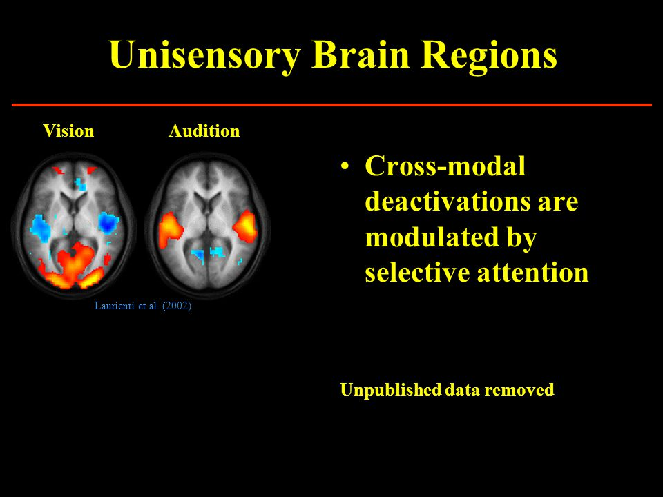 Unisensory Brain Regions Brodmann Areas http://spot.colorado.edu/~dubin/talks/brodmann/brodmann.html Do the unisensory cortices interact.