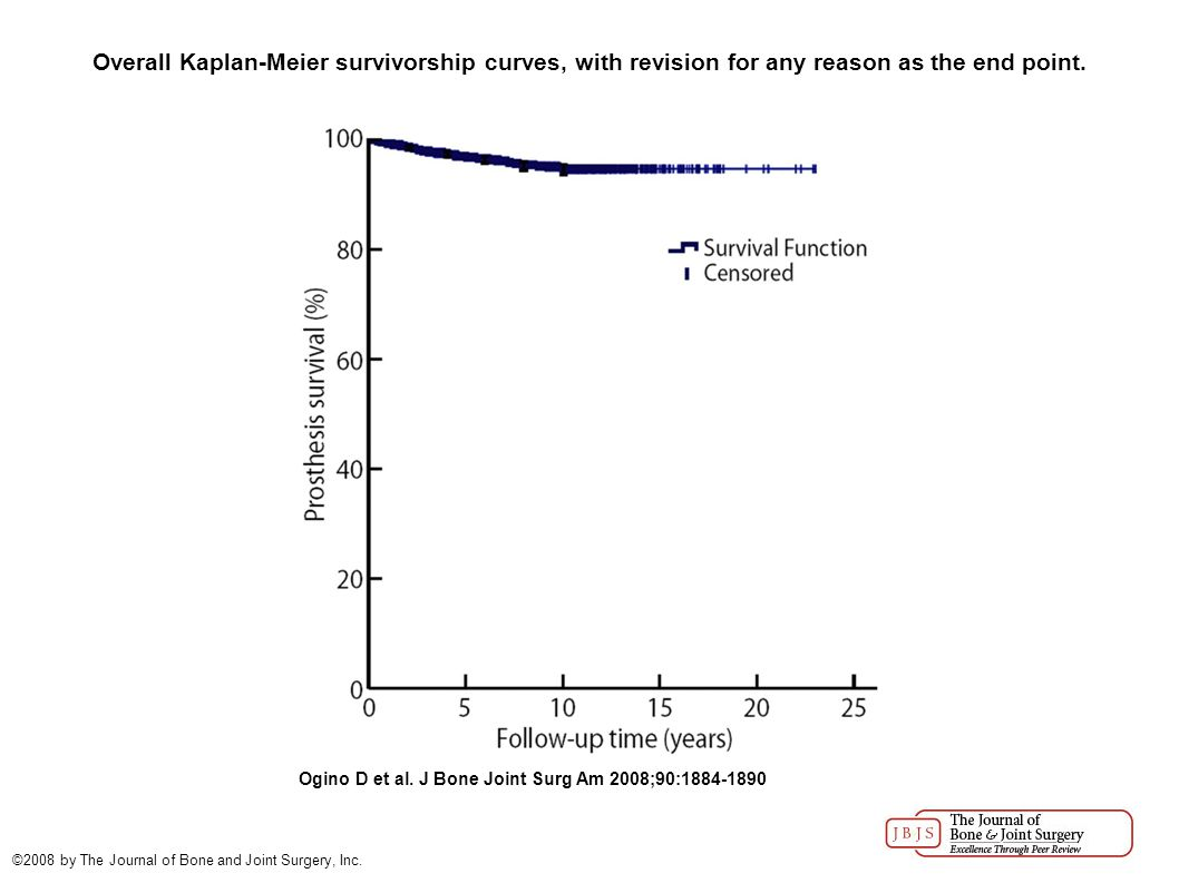 Overall Kaplan-Meier survivorship curves, with revision for any reason as the end point.