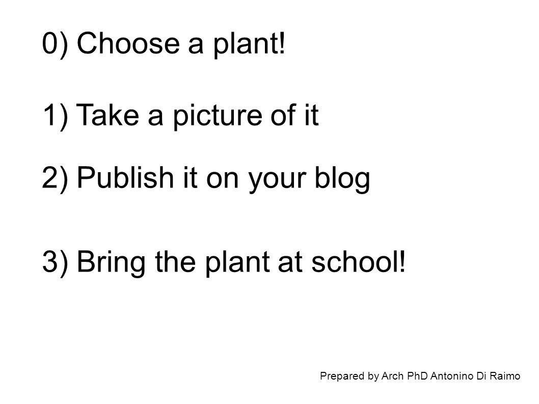 Prepared by Arch PhD Antonino Di Raimo 0) Choose a plant.