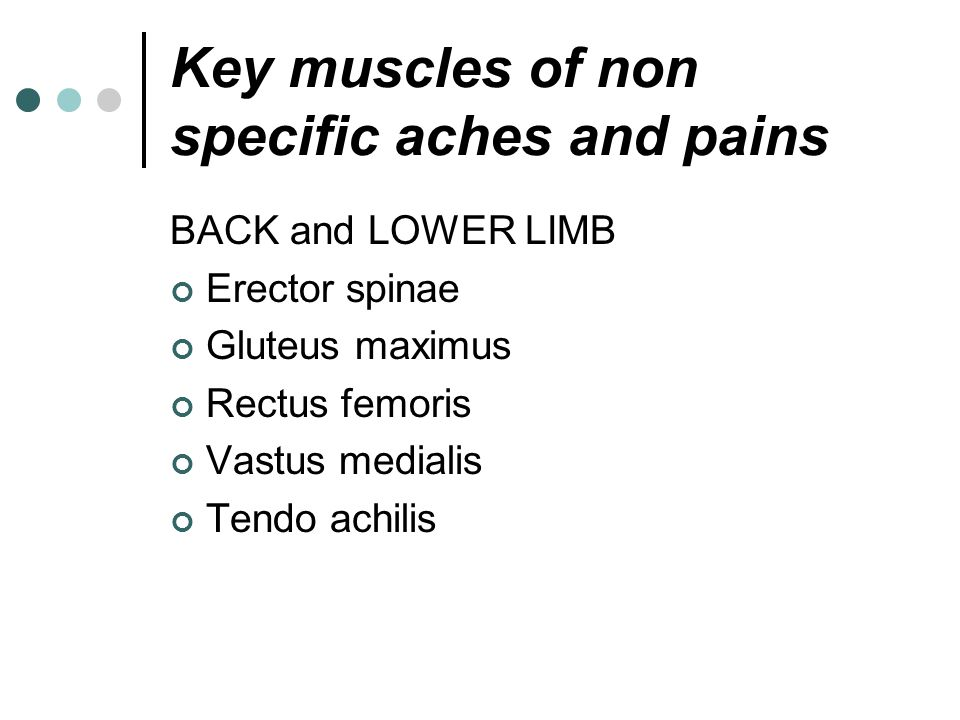 Key muscles of non specific aches and pains BACK and LOWER LIMB Erector spinae Gluteus maximus Rectus femoris Vastus medialis Tendo achilis