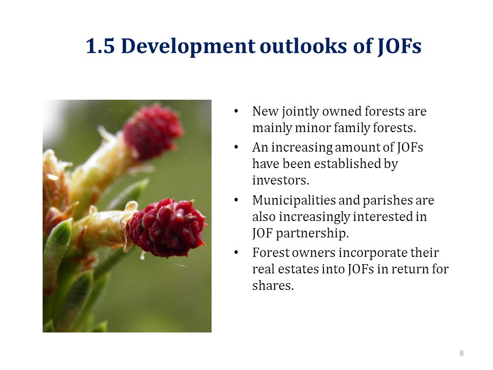 1.5 Development outlooks of JOFs New jointly owned forests are mainly minor family forests.