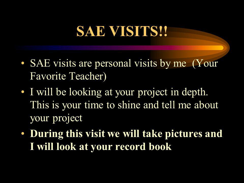 SAE VISITS!! SAE visits are personal visits by me (Your Favorite Teacher) I will be looking at your project in depth. This is your time to shine and t