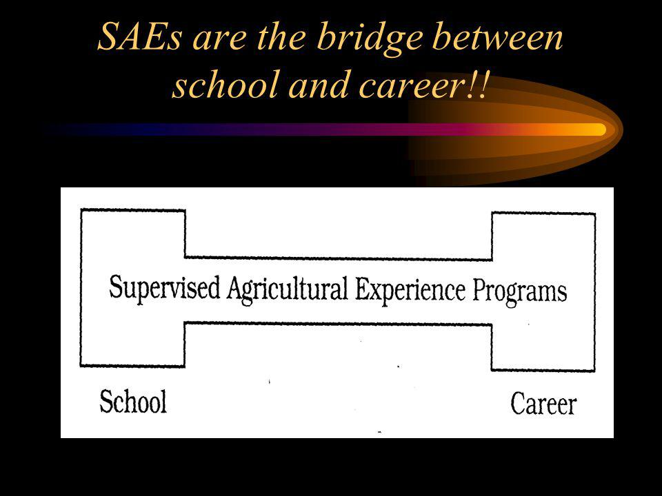 SAEs are the bridge between school and career!!