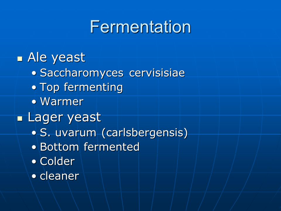 Fermentation Ale yeast Ale yeast Saccharomyces cervisisiaeSaccharomyces cervisisiae Top fermentingTop fermenting WarmerWarmer Lager yeast Lager yeast S.