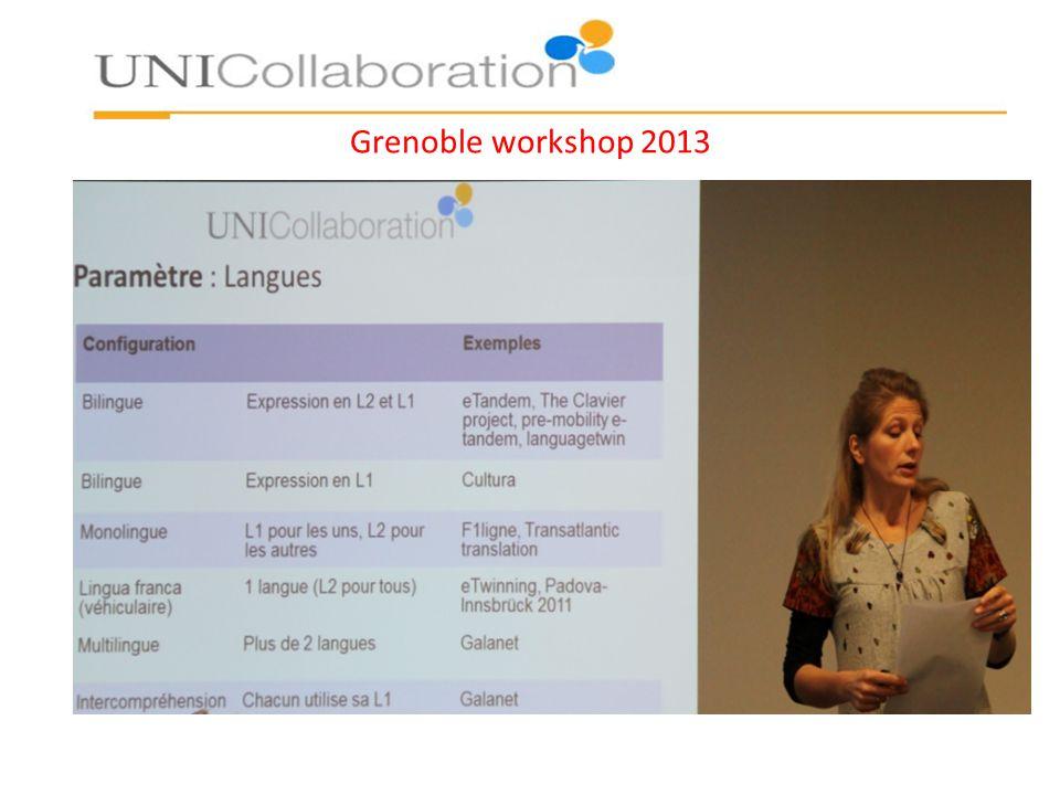 Grenoble workshop 2013