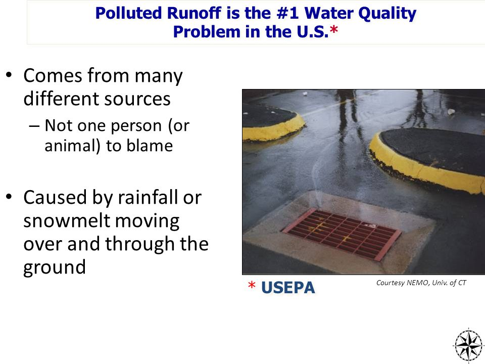 Polluted Runoff is the #1 Water Quality Problem in the U.S.* Polluted Runoff is the #1 Water Quality Problem in the U.S.* * USEPA Courtesy NEMO, Univ.