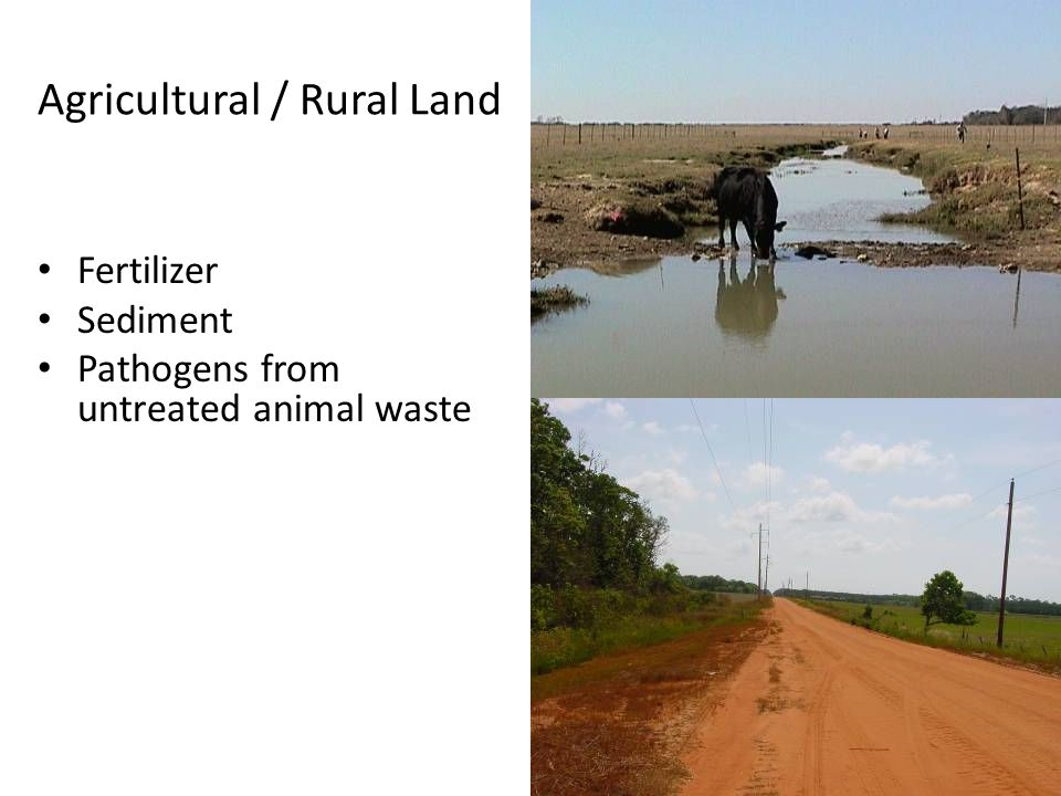 Agricultural / Rural Land Fertilizer Sediment Pathogens from untreated animal waste