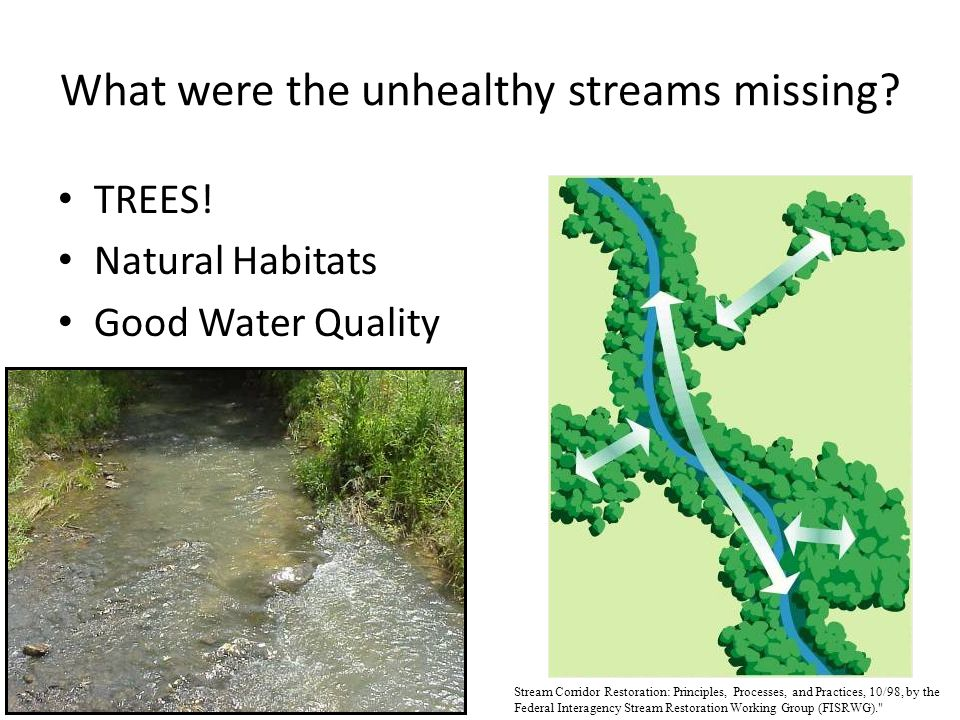 TREES! Natural Habitats Good Water Quality Stream Corridor Restoration: Principles, Processes, and Practices, 10/98, by the Federal Interagency Stream