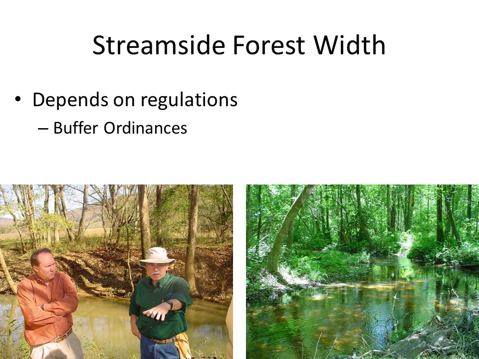 Streamside Forest Width Depends on regulations – Buffer Ordinances