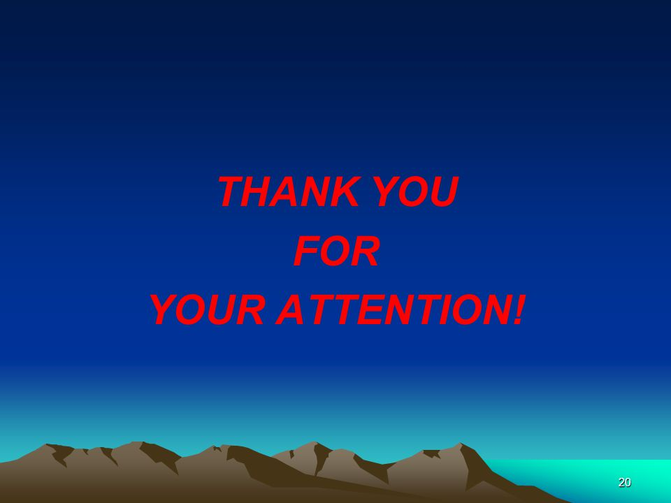 THANK YOU FOR YOUR ATTENTION! 20