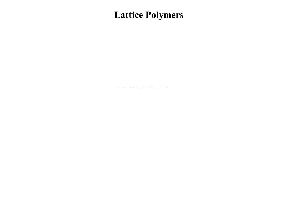Lattice Polymers