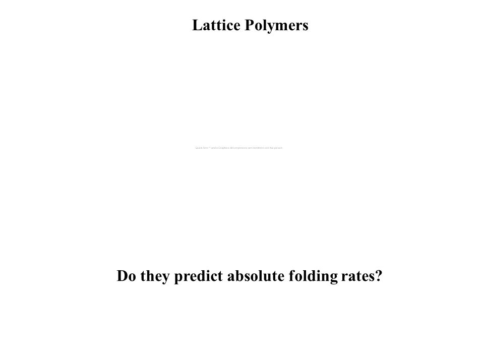 Lattice Polymers Do they predict relative folding rates?