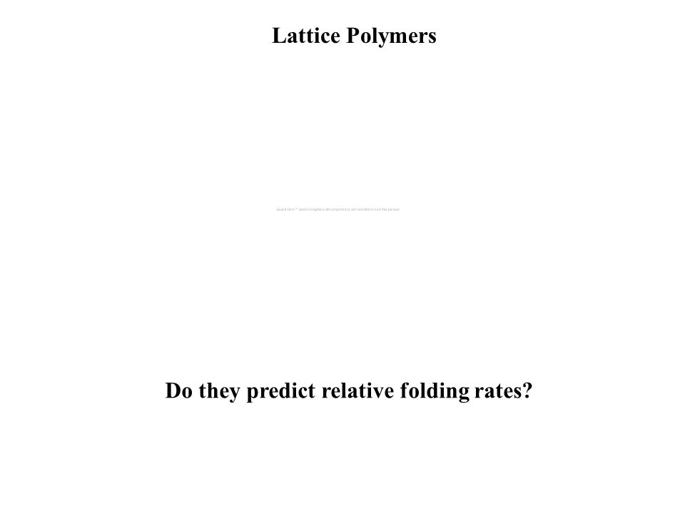 Lattice Polymers Do they predict relative folding rates