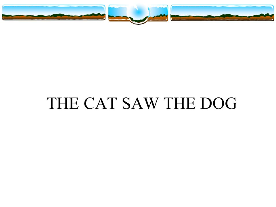 THE CAT SAW THE DOG